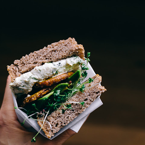 The Veggie | Sunflower Seed Tzatziki + Golden Beets w/ Sumac + Avocado + Sprouts