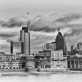 Millenium Bridge by Stephanie Moore - Landscapes Travel ( b&w, thames, london, north bank, pwcbwlandscapes, landscape, millenium bridge )