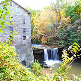 Lanterman Mill by Rosemary Isabella - Nature Up Close Water (  )