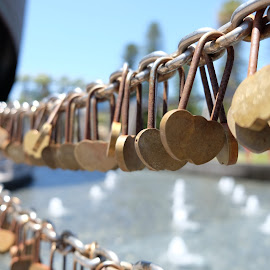 by Eldon Pillai - Artistic Objects Other Objects ( #lovelocks#love#friendship#fountain )