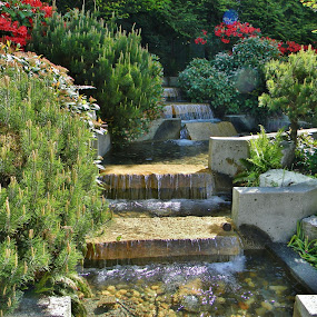 Green Vancouver by Gary Ambessi - City,  Street & Park  City Parks