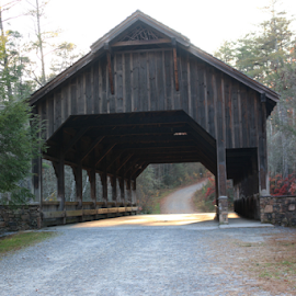 Covered Bridge in DuPont State Park by Ron Walker - Buildings & Architecture Bridges & Suspended Structures ( water, natural light, wooden, wood, nature, covered bridge, fall, architecture, bridge, landscapes )