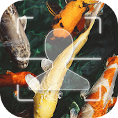Download Gold_Fish Facelock theme APK to PC