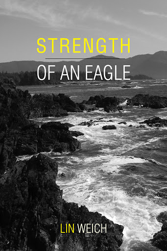 Strength of an Eagle cover
