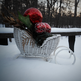 New Year's Eve 2018 before sundown by Liz Pascal - Public Holidays Christmas ( red, winter, sleighs, white, and green, snow sleigh, white wicker )