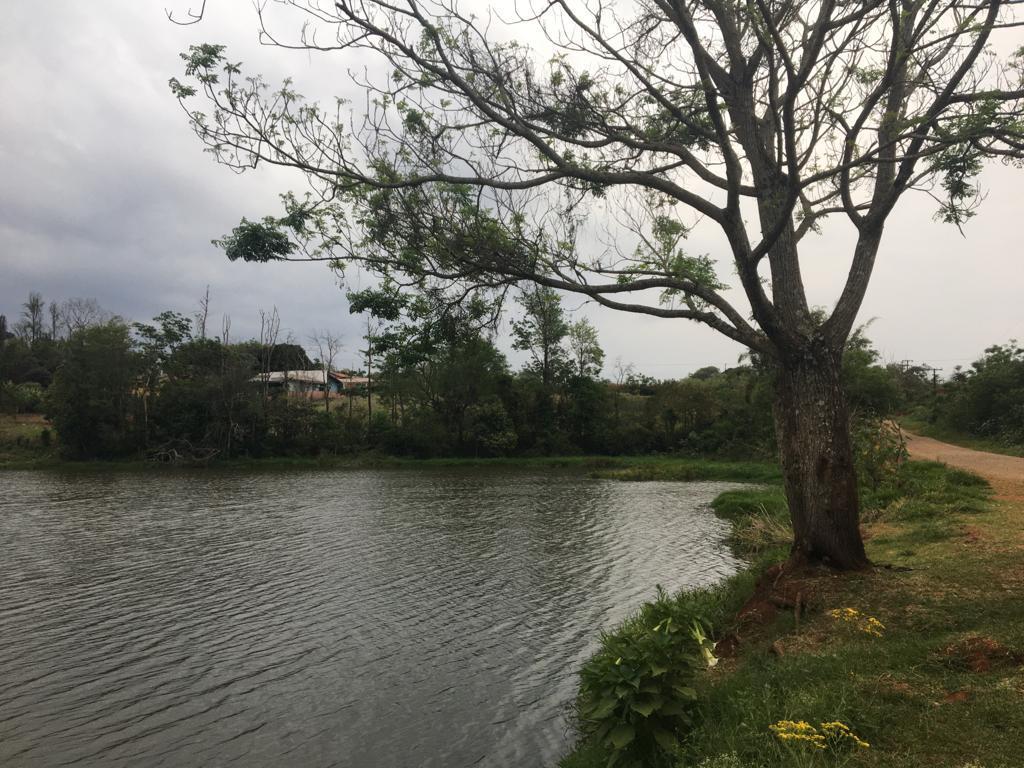 Terreno à venda, 8000 m² por R$ 1.200.000 - Gleba Palhano - Londrina/PR