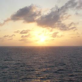 by Janet Blackwell Wilson - Landscapes Sunsets & Sunrises