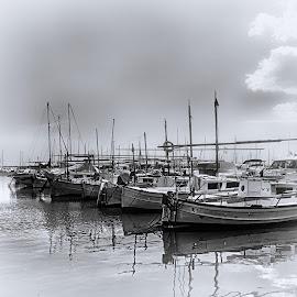 Port de Portixol - Mallorca by Antonio Navarro - Transportation Boats