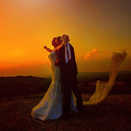 wedding by Dejan Nikolic Fotograf Krusevac - Wedding Bride ( wedding photography, weddings, wedding, bride, groom )