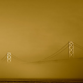 Shrouded by Jeff Steiner - Buildings & Architecture Bridges & Suspended Structures ( san francisco bay, bay bridge, san francisco )