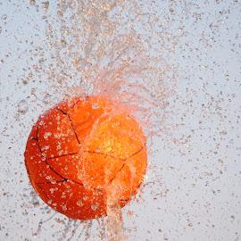 WATER by NAYAN  SARKAR - Abstract Water Drops & Splashes
