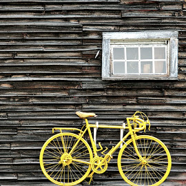 Yellow Bike by Judy Laliberte - Novices Only Objects & Still Life ( bike, window, barn, barnboards, grey, yellow )