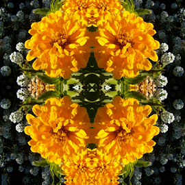 See My Smiling Face by Nancy Bowen - Digital Art Things ( mirrored reflections, digital manipulation, yellow, flower )