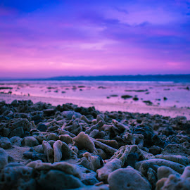 by Anurag Das - Landscapes Beaches ( coral, magenta, sunset, beach, seascape )