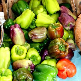 Green, red, purple by Julia Pegler - Food & Drink Fruits & Vegetables ( purple, farmers market, green, capsicum, bell peppers, garden )