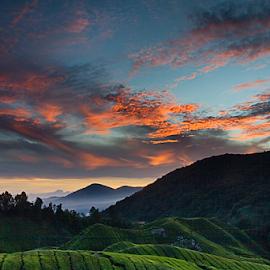 More Than A Sunrise by Steven De Siow - Landscapes Sunsets & Sunrises ( hill, mountain, landscape photography, sunrise, landscape,  )