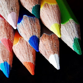Pencils by Pradeep Kumar - Artistic Objects Education Objects