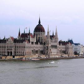 Hungarian Parliament Building by Ljiljana Pejcic - Buildings & Architecture Public & Historical