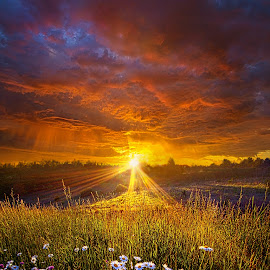 Come Again Another Day by Phil Koch - Landscapes Sunsets & Sunrises ( vertical, travel, yellow, sky, nature, weather, light, orange, colors, twilight, art, mood, journey, horizon, portrait, country, dawn, environment, season, serene, outdoors, lines, natural, hope, inspirational, wisconsin, ray, landscape, spring, sun, photography, life, emotions, horizons, inspired, clouds, office, park, heaven, beautiful, scenic, living, morning, field, blue, sunset, amber, peace, meadow, beam, sunrise, earth )