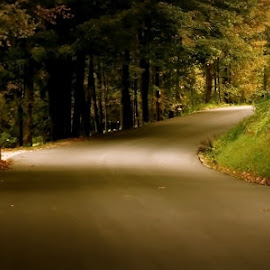 Country Road by Judy Laliberte - Novices Only Landscapes