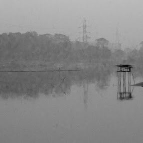 বর্ণহীন বর্ণচ্ছটা by Ashikur Rahman - Landscapes Waterscapes ( winter, b&w, fog, morning, black&white )