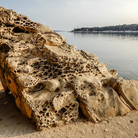 Rab - Croatia by Milan Tomicic - Nature Up Close Rock & Stone ( stone, rock )