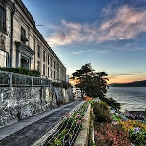 Alcatraz at Sunset by Dee Zunker - Buildings & Architecture Public & Historical ( sunset, alcatraz, flowers )