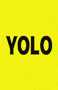 NEW YOLO:Anonymous Q&A