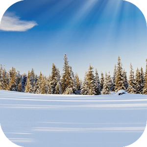 Download Winter Wallpaper for PC