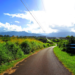 cemetery hill  by Leimaile Guerrero - Landscapes Mountains & Hills ( hill, kauai, mountain )