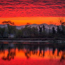 Red Morning by Jaro Miščevič - Landscapes Cloud Formations ( clouds, tree, reflections, trees, lake, sunrise, morning, landscape )