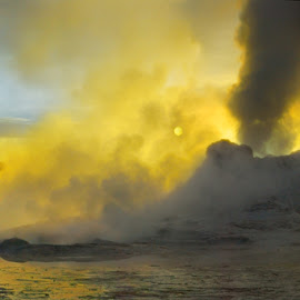 Sleeping Dragons by Craig Bill - Nature Up Close Rock & Stone ( geyser, yellowstone, volcano, fountain, steam,  )