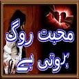 Mohabbat Rog hoti Hai Novel