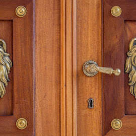 Palace doors by Adrian Ioan Ciulea - Artistic Objects Furniture ( lion, wood, door, artistic objects, palace, war, ornaments,  )
