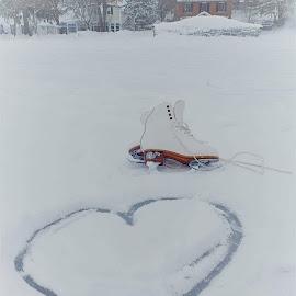 Winter Love by Michelle Kelly - Novices Only Objects & Still Life