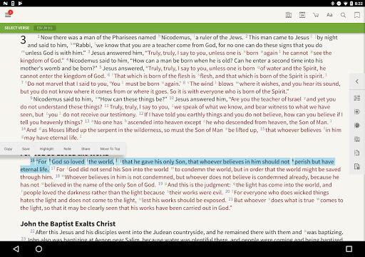 ESV Strong's Bible screenshot 7