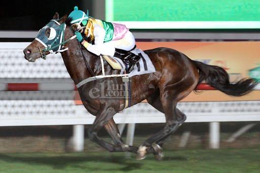 Negro Bombita (Dushyantor) gana Handicap (1200m-Pasto-CHS). - Staff ElTurf.com