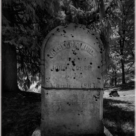 Headstone at Ringwood Manor Cemetery by Ronny Mariano - Buildings & Architecture Public & Historical ( ir, old, black and white, infrared, ringwood manor, cemetery, 2016, stone, grave, state park, headstone, gravestone, bnw )