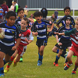 Mighty Mini Players by Linda Taylor - Sports & Fitness Rugby ( queensland, ball, brisbane valley bulls, fitness, sport, children, kids, game, run, under 8's, running, junior, football, ipswich, australia, footy, competition )