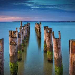 Inside Cape Pilings by Ed & Cindy Esposito - Landscapes Sunsets & Sunrises ( gentle, ocean, sunrise, morning, pilings, cape cod, soft )