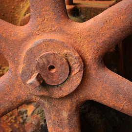 Oxidation by Robert Coffey - Artistic Objects Other Objects ( wheel, metal, oxidation, rusty, tractor, spoke )