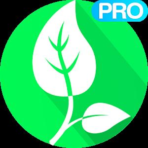 Vegetarian and Vegan Recipes Pro For PC / Windows 7/8/10 / Mac – Free Download