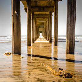 La Jolla, Beach,  Scripps Pier by Jayasimha Nuggehalli - Landscapes Beaches