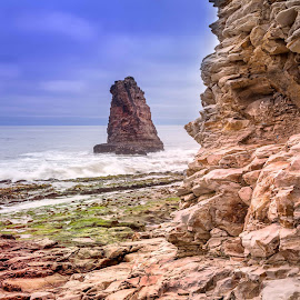 DAVENPORT STACK by Julio Gonzalez - Landscapes Beaches ( 5d mark2, california, davenport beach, rock formation, stack )