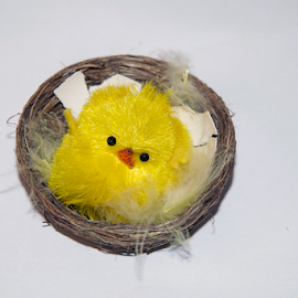 easter decorations by LADOCKi Elvira - Public Holidays Easter ( easter )