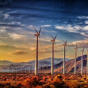 Palm Springs Windmills by Jay Andrino - Landscapes Prairies, Meadows & Fields ( desert, sunset, palm springs, windmills, fields )