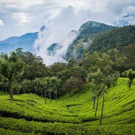 Ooty, Tamilnadu, India by Kalaivanan Murugesan - Landscapes Mountains & Hills