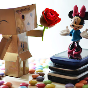 we are by Herry Wibisono - Artistic Objects Toys ( love, field, rose, danbo, toy, candy, artistic, valentine, mini )