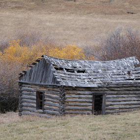 Abandoned Cabin by James Oviatt - Buildings & Architecture Decaying & Abandoned