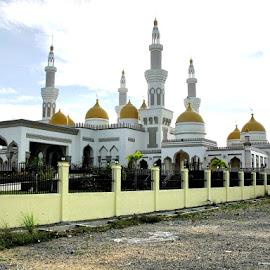 THE GOLDEN MOSQUE by Au Santiago - Buildings & Architecture Places of Worship ( religion, muslim, buildings, architecture, worship )